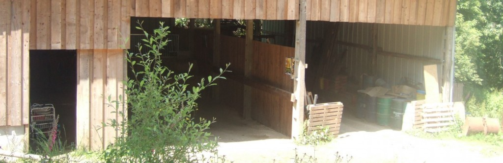 cropped-abri-cheval-ranch-tashunka.jpg